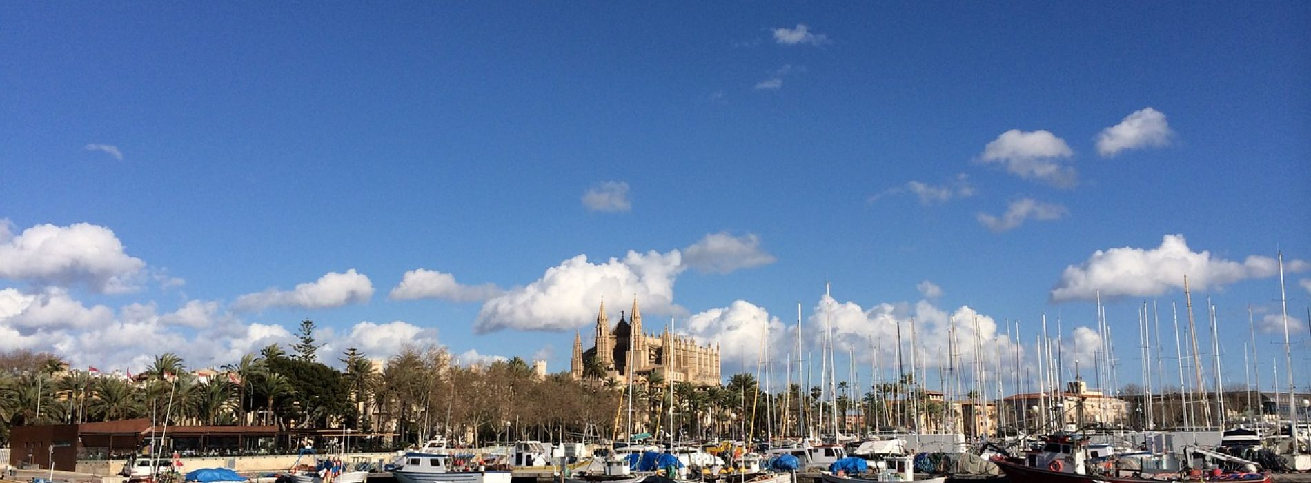 Conoce Palma de Mallorca: qué hacer en tres días