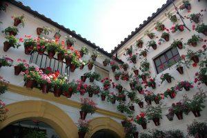 Córdoba en Instagram