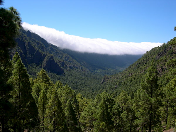Parque natural de la Caldera de Taburiente