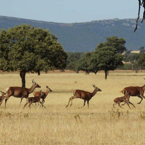 Los 15 parques naturales para relajarse y olvidarse del estrés